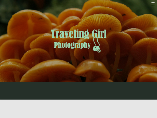 travelinggirlphotography.weebly.com
